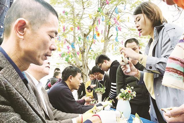 漳州南湖水仙花文化艺术展开幕 将展览至正月十六日
