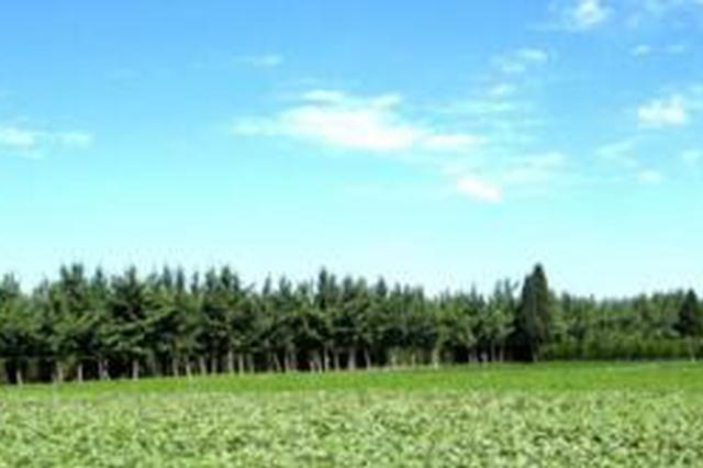 """福建林业提出""""绿色目标"""" 八闽绿起来还要美起来"""
