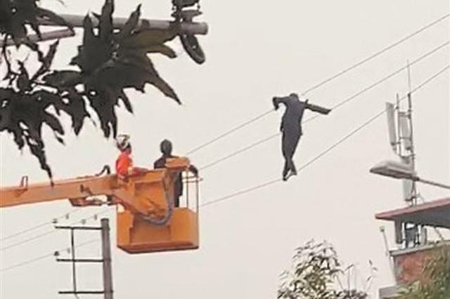 """泉州一男子酒后爬上电线杆 高压电线上""""走钢丝"""""""