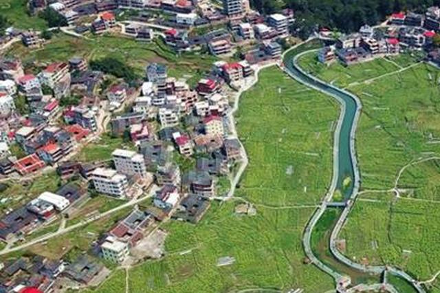 泉州虹山乡油菜花开引客来 绿色发展推动乡村振兴