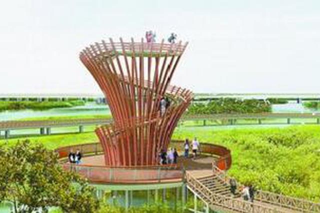 厦门首个红树林主题公园 预计明年底建成开放