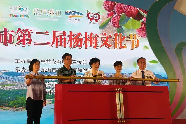 精彩纷呈 龙海市第二届杨梅文化节隆重开幕