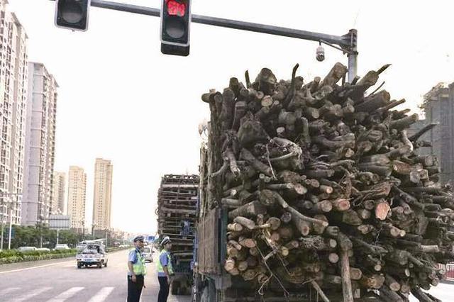 漳州台商区交警大队7天查获230多起货车交通违法