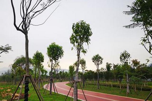 福清湿地公园A段下月开放 占地123亩开辟城市菜地