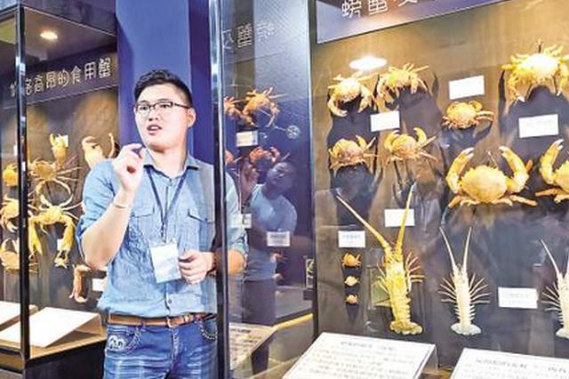 澎湖小伙到厦门创办螃蟹博物馆 开发文创品增海洋味