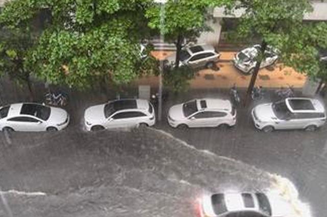 昨日傍晚大雨突袭厦门 半小时降雨量近50毫米