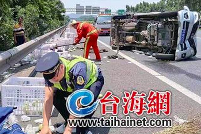 沈海高速漳州段一货车失控侧翻 上千斤芭乐洒路面