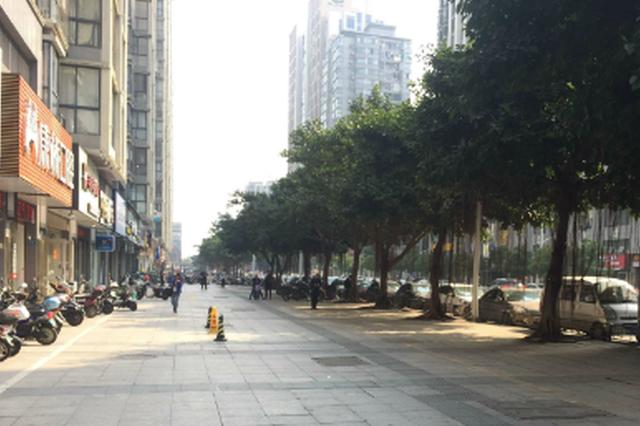 漳州市区14条道路将增设盲道 提升城市环境质量和水平