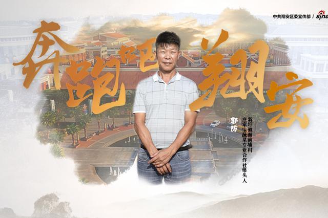 奔跑吧翔安丨兴乡新农人:一袋白菜种子 开启乡村振兴之路