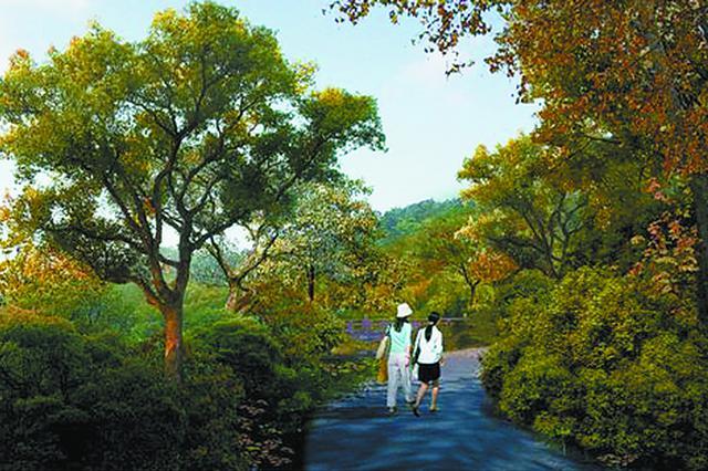 厦门市园林植物园将新增一个漆树园 目前已种下第一批漆树