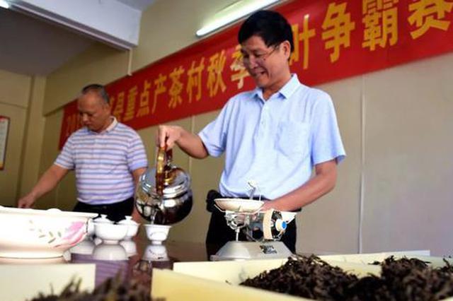 2019年南靖土楼茶秋季茶王赛评比结束