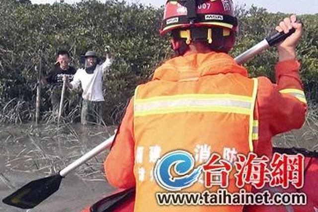 漳州两学生去红树林做调研 寻找无人机时被困滩涂