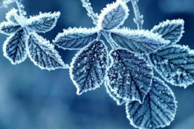本周福建省气温将再创新低 北部地区将现初霜