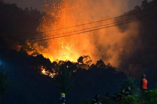 厦沙高速凤溪隧道出口附近突发山火 夜间救援队出征