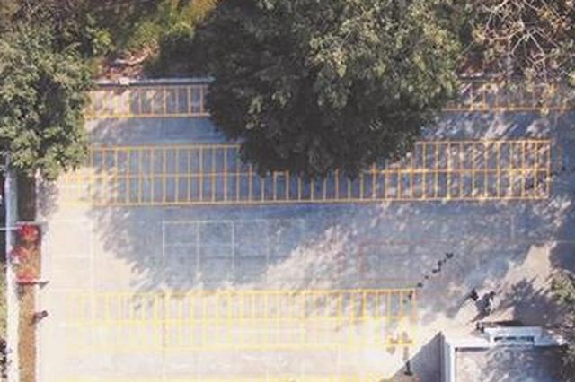 泉州市区中山公园停车场改造完工 能停车超200辆