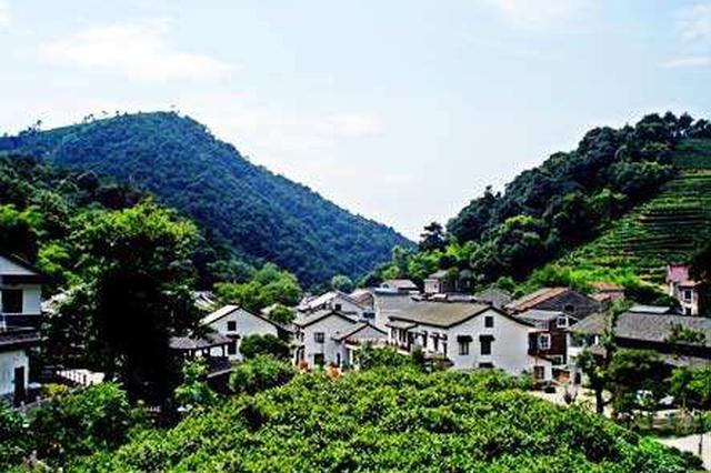 正公示!福建这15个镇拟命名为省级森林城镇
