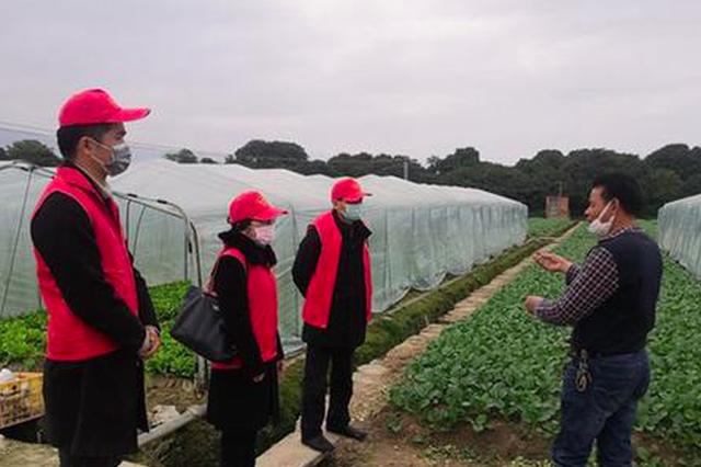 """福州市农业农村局科技惠""""三农""""抓好蔬菜生产"""