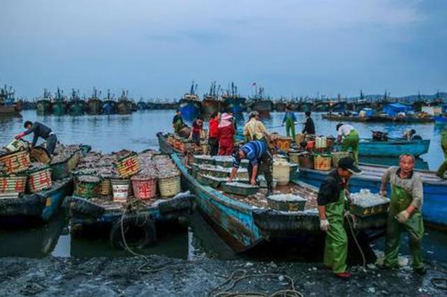 漳州东山100多家海鲜企业捐赠数十吨海产品支援湖北