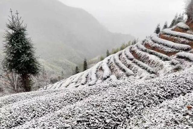 福建首场降雪美翻了 福州最低温跌破0℃(图)