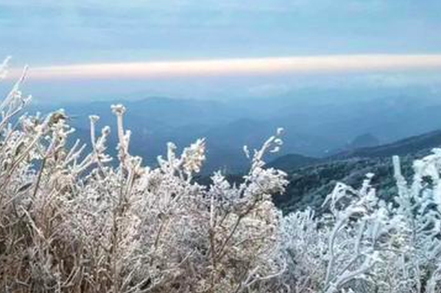 福建多地出现雾凇景观 美如仙境让人心醉(图)