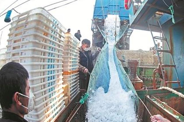 泉州多举措推进渔船复工复产 防控、复工两不误
