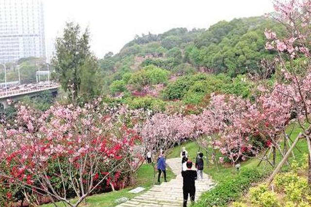 4月1日起厦门恢复本市组团旅游 跨省市出入境暂未恢复