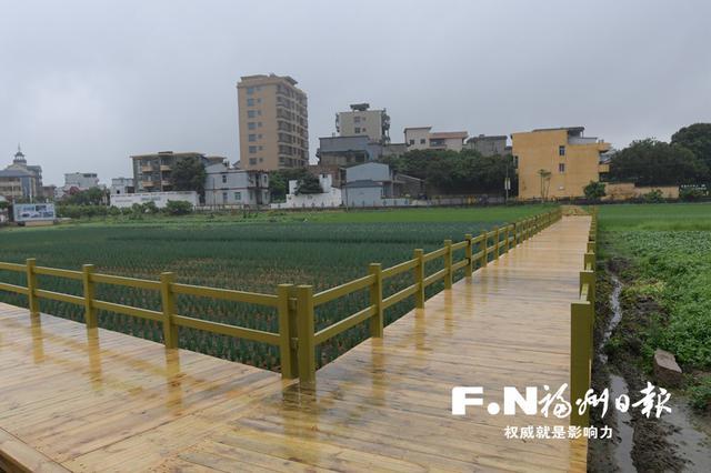 福州乡村振兴2019年度实绩考核排名全省第一