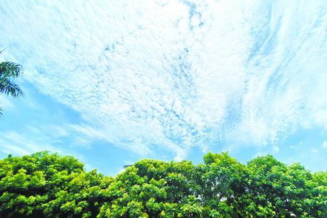 厦门今日最高气温35℃ 未来七天高温持续打卡