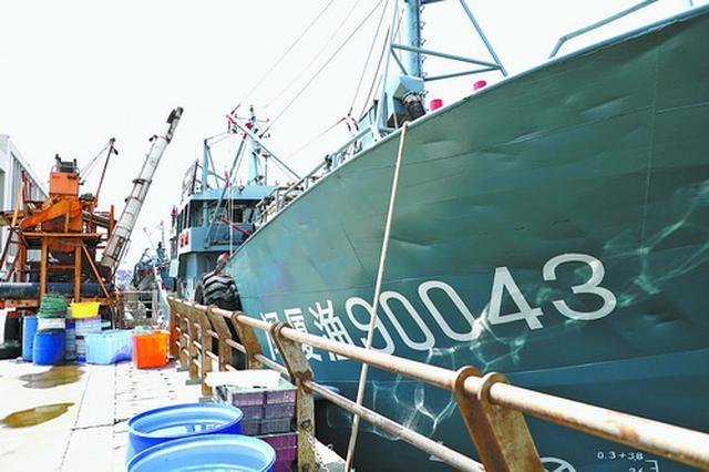 厦门首批760艘渔船开渔 渔民积极作业期待鱼虾满舱