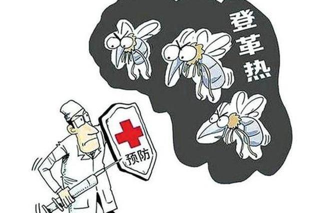夏秋季节是登革热传播的高发期 泉州市疾控中心发布重要提醒
