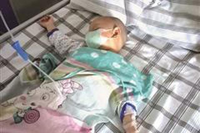龙岩2岁宝宝患白血病 高昂治疗费难住了这个家庭
