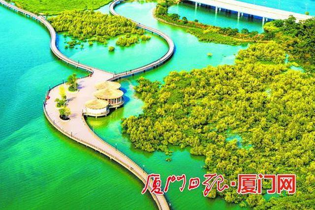 """厦门""""海上森林""""下潭尾红树林生态公园明年5月底前完工"""