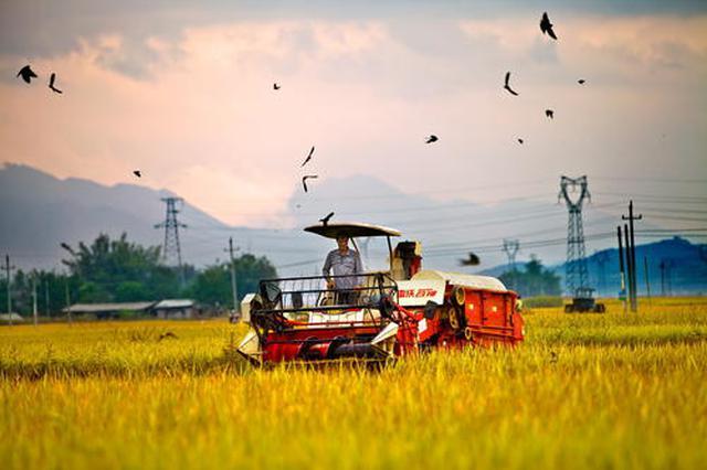 11家厦企入选中国农业企业500强 总数位居全省首位