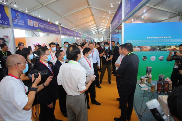 2020食用菌全产业链创新博览会在厦门举行