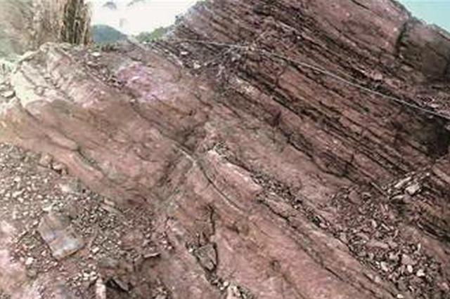 龙岩继续发现50余枚恐龙足迹