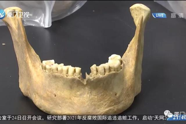 台湾古人全基因组数据:源于大陆东南沿海
