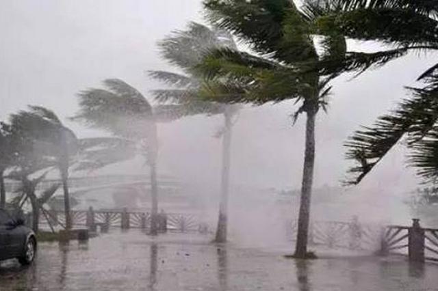 福州市防指启动防台风Ⅳ级应急响应