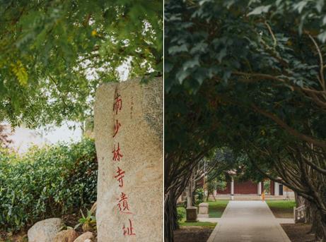 这家禅意酒店藏于少林寺 尽显乐活态度