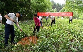郵儲銀行三明市分行與市郵政分公司協同開展義務植樹活動