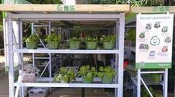 厦门:厨余垃圾可兑换新鲜蔬菜