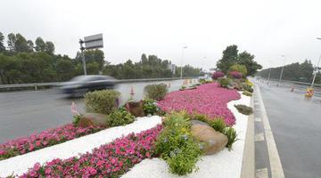 福州市提升机场高速公路沿线景观