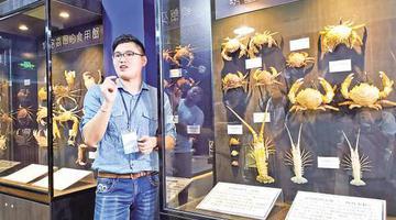 澎湖小伙到厦门创办螃蟹博物馆