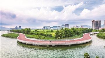 厦门岛内特色步道盘点