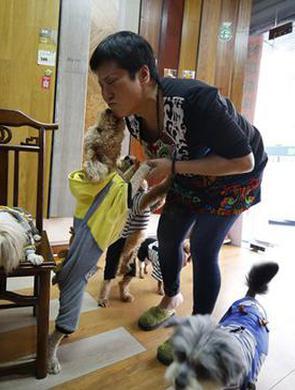晋江阿姨30年收养上百条流浪狗
