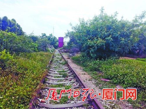 改造前,老铁路周边杂草丛生