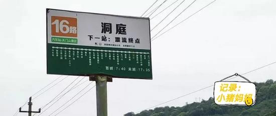 (附近公车站名叫洞庭,拍摄:小猪妈妈)