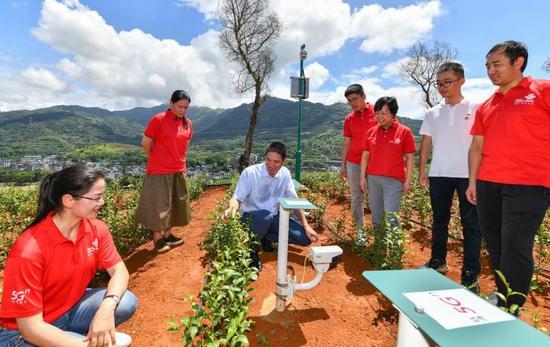 创新引领现代农业,联通5G智慧茶园有何不同?