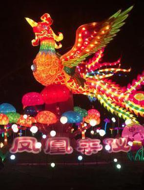 福建漳州灯展 各色造型流光溢彩