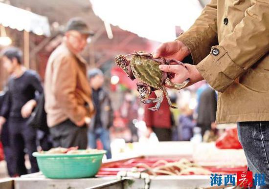 厦门八市的虾蟹近期迎来一波小幅涨价。记者 唐光峰 摄