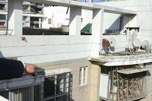 厦门市民用楼中楼养鸽子 鸽粪难闻邻居备受其扰